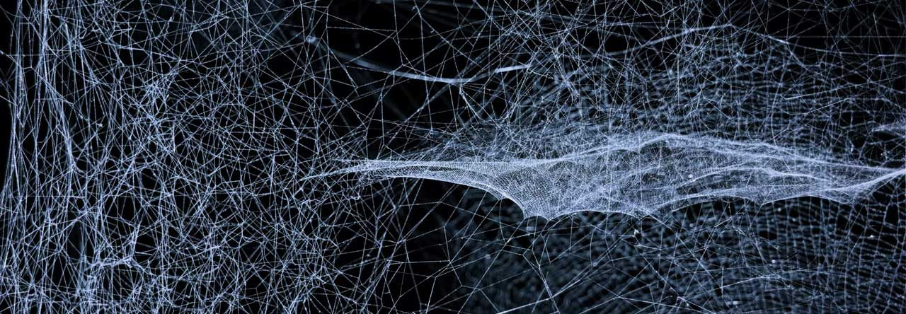 Spiderweb Impressum